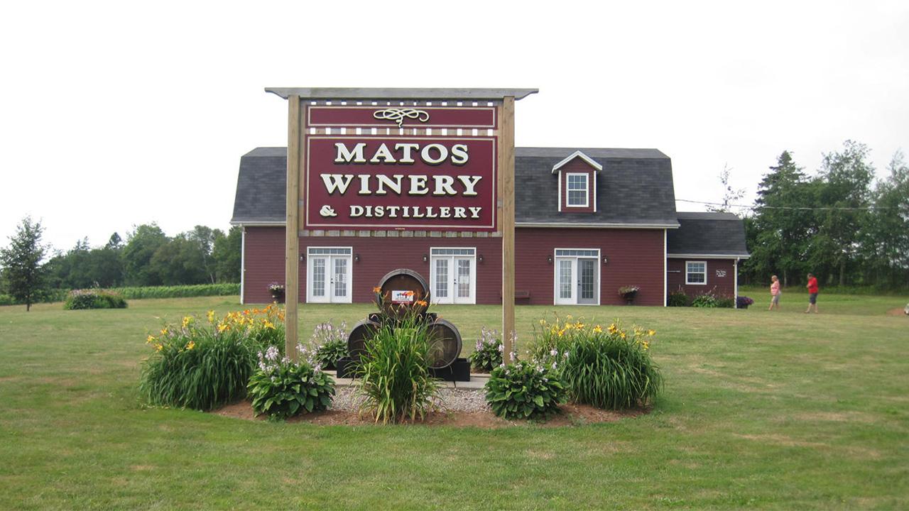 Matos Winery & Distillery